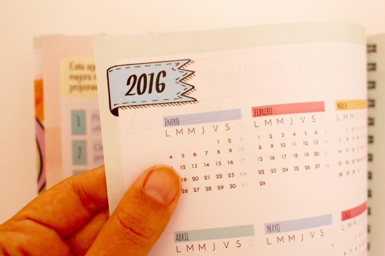 2016 Daily Mindstyle designer agenda página