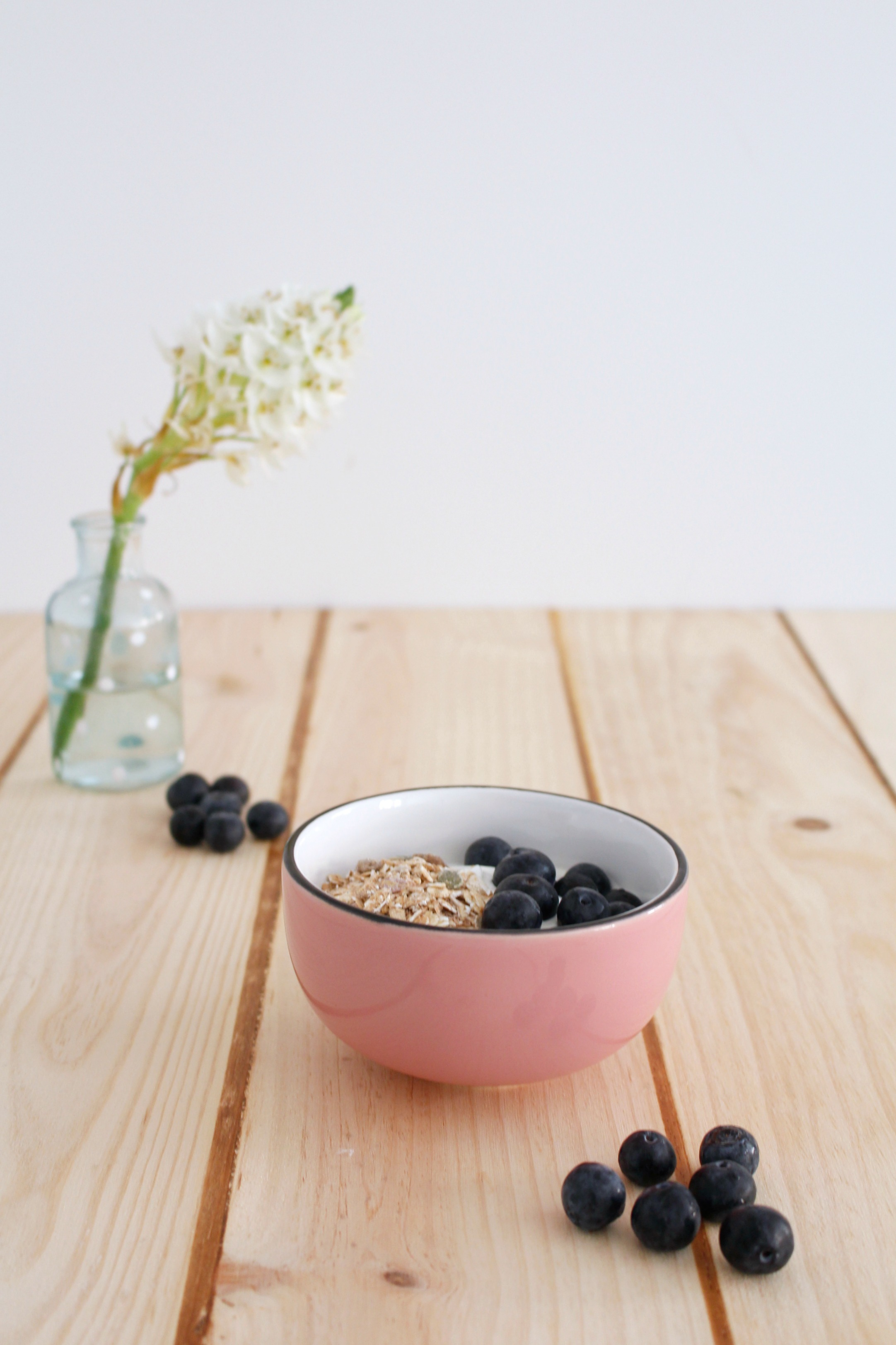 receta arandano azul miredcarpet 4