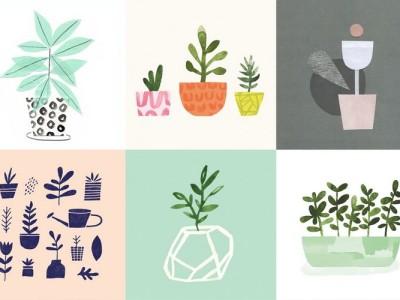 Jen B Peters Ilustracion Botanical