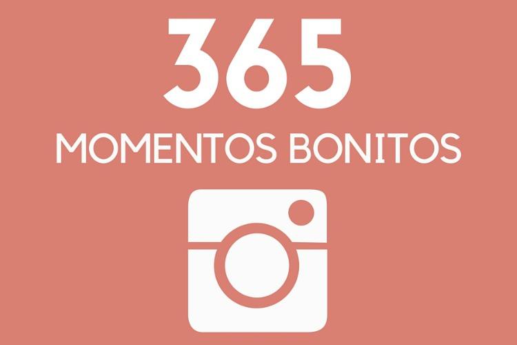 365 miredcarpet
