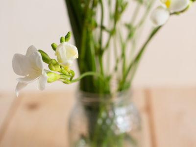 flores primavera decoracion